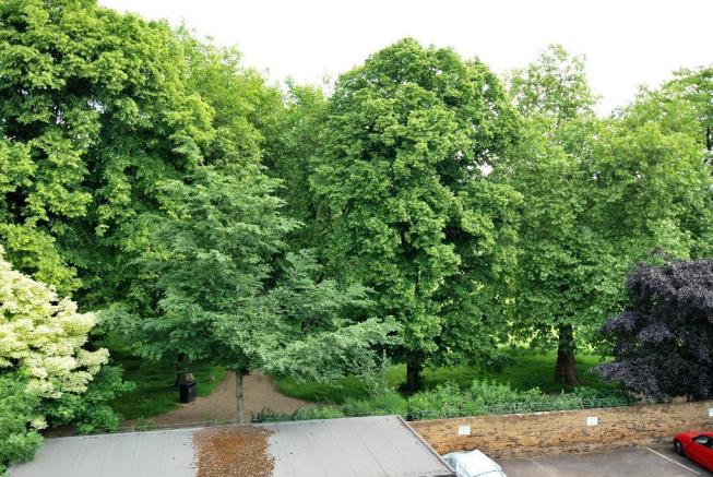 View from Balcony - Summer