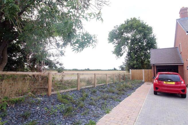 Curlew meadow 2-2.jpg