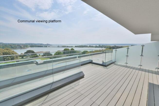 Communal viewing platform