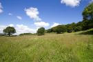 LOT 1 - Farmland