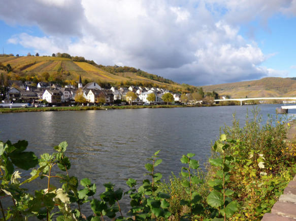 Mosel banking Zell