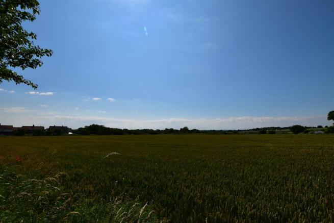 Views Over Greenbelt
