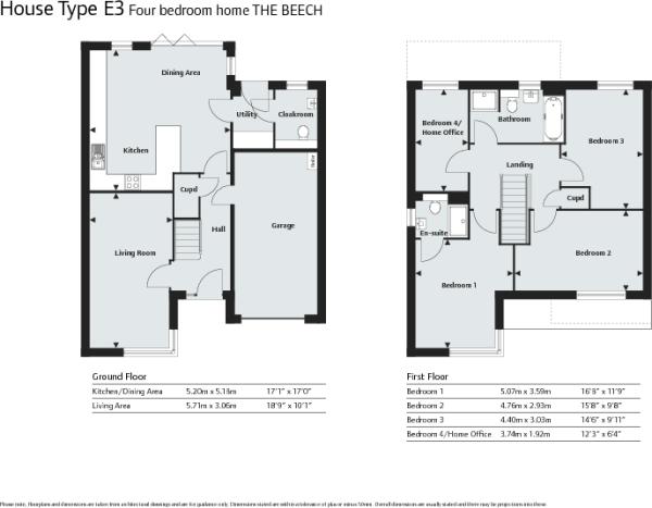 The Beech Floor Plan