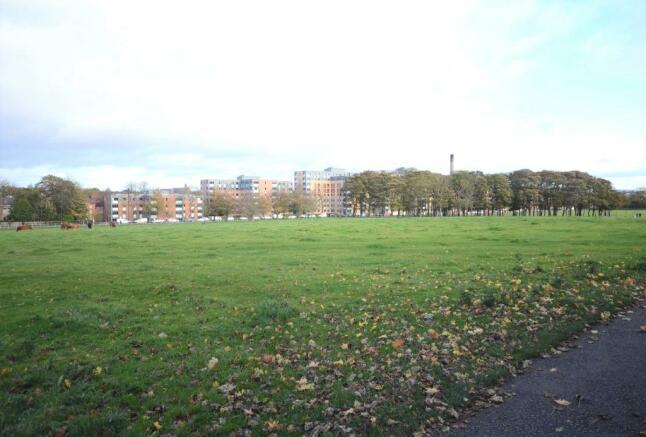 Newcastle Town Moor