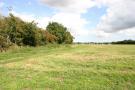 Field Views