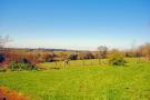 Local views to Fa...