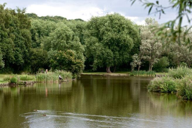Salter`s Brook, Cudworth