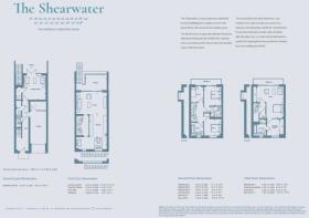 The Shearwater