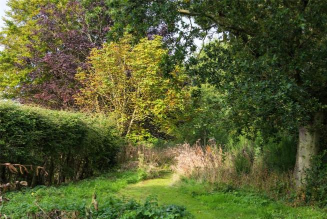 Garden/Trees