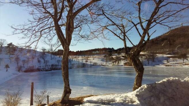 Lake (10 min walk)