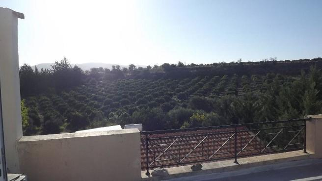 View from roof terra