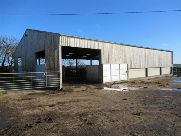 Cubicle Shed with Covered Feeding Area
