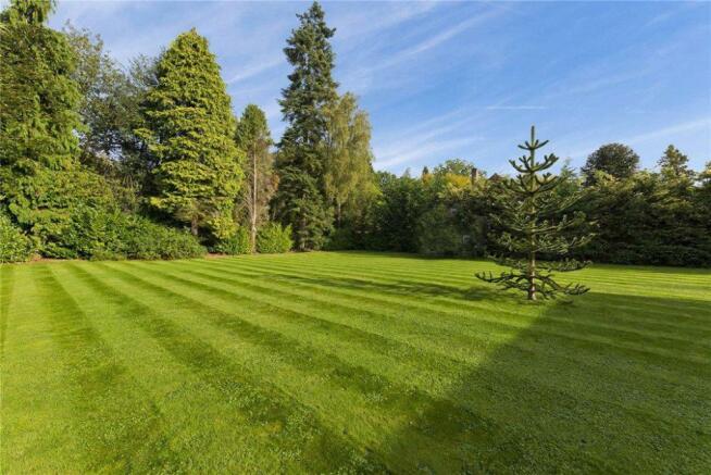 Meadway36.Garden1.jpg