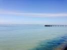 Local View - Totl...