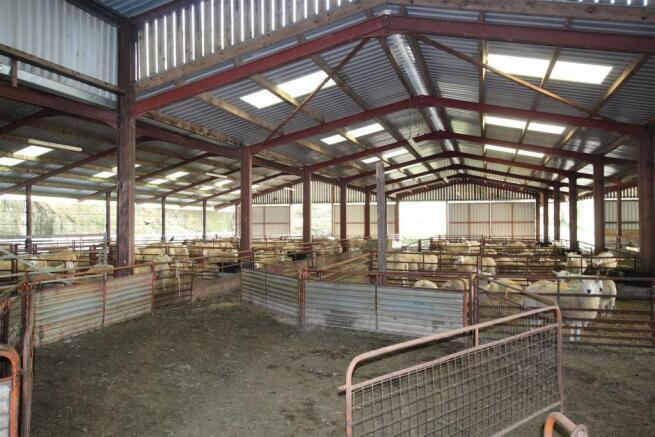 sheep shed internal.JPG