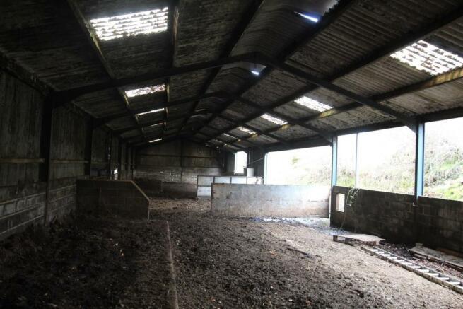 cattle shed internal.JPG