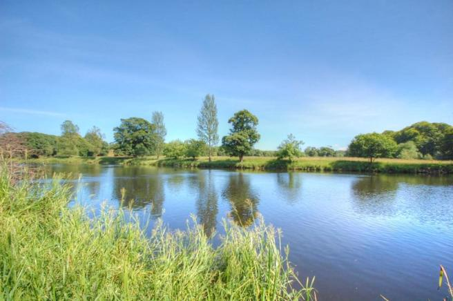 Alt River Views