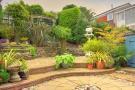 Mid Level Rear Garden