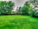 Garden Area off Conservatory