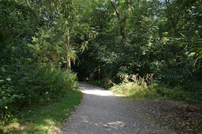 Allestree Park Photographs
