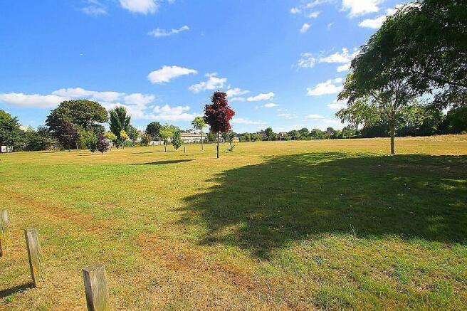 Overlooking Fields