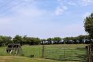gated paddock