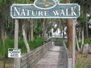 nature walk way