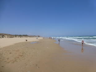 GUARDAMAR BEACHES