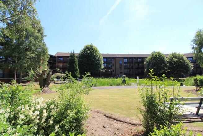 Communal Garden1