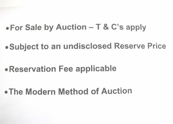 AUCTION PICTURE.jpg