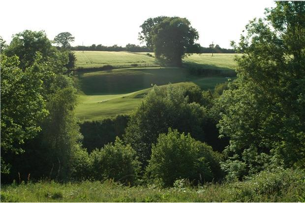 GolfCourse1