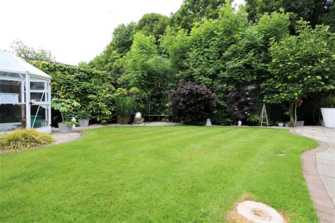 2rear garden IMG_6494.JPG