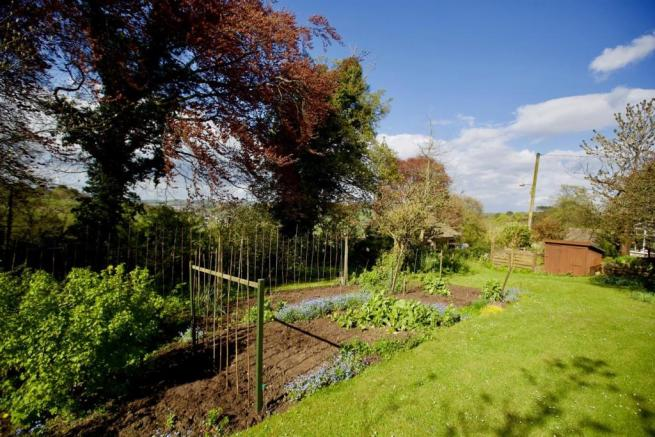 Greenhill veg patch.jpg