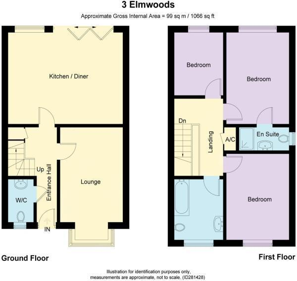 3 elmwoods.jpg