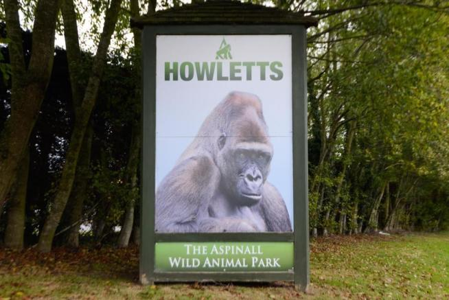 Howlets sign