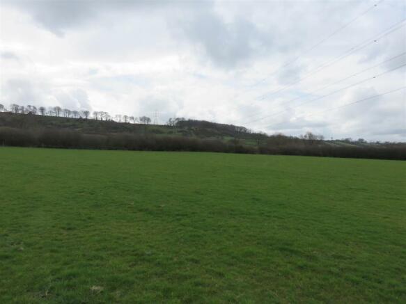 Field 1 (8.29 Acres)