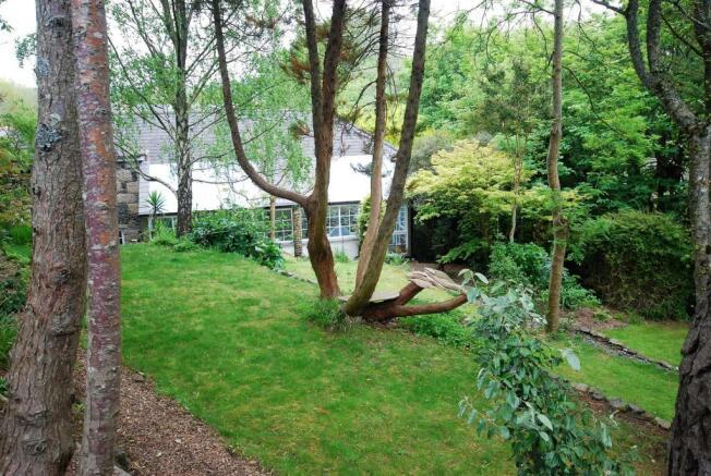 garden back 2.jpg