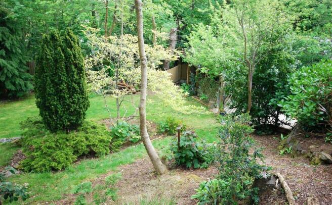 garden back 3.jpg