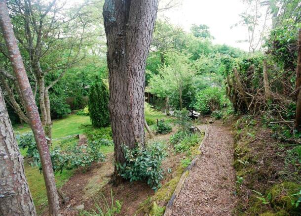 garden back 4.jpg