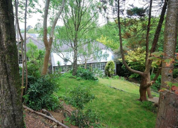 garden back 5.jpg