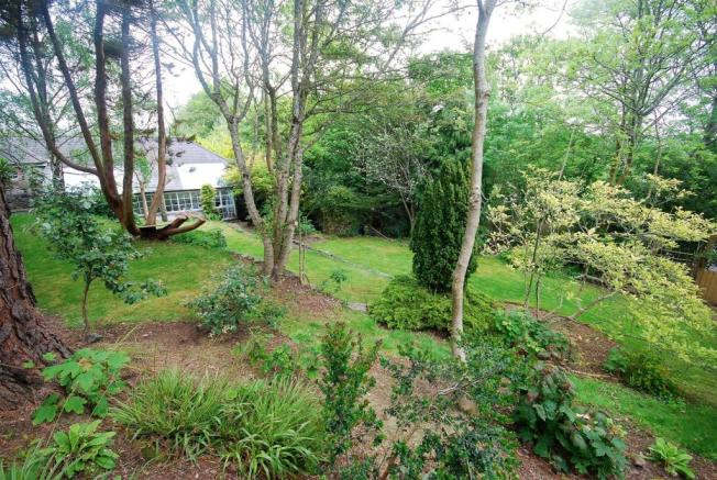 garden back.jpg