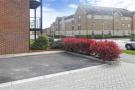 The Space Is Next To The Red Bush