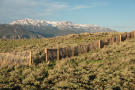 Ranch land with fence and mountain view