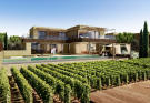 Frontline premium villa with pool and vineyard