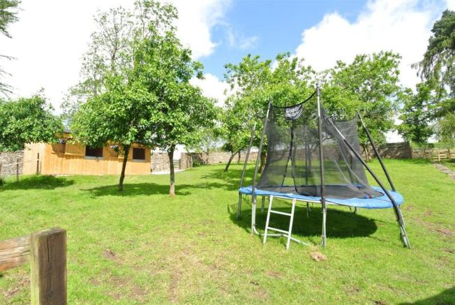 Shared Orchard and Space to Play.JPG