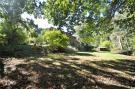 Garden Above Woods