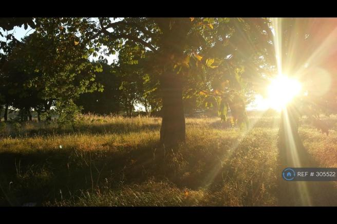 Gorgeous Open Parkland Opposite Property