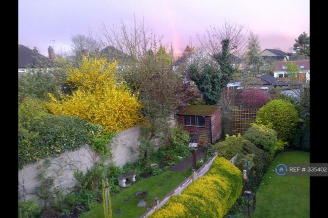 Garden From Bedroom Window