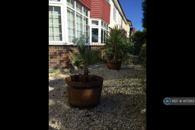 Front Of House Plants