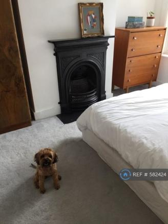 Bedroom (Dog Not Included)